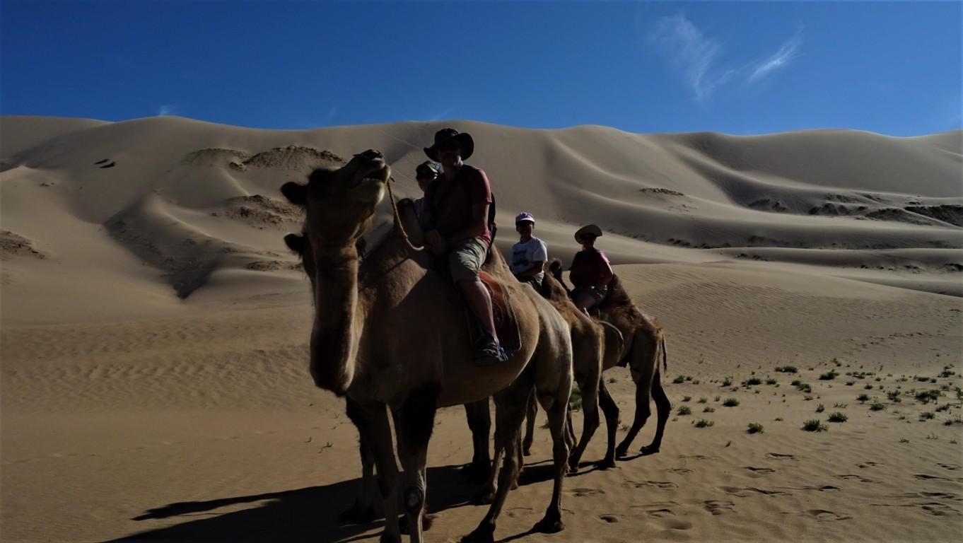 J3 chameaux 2